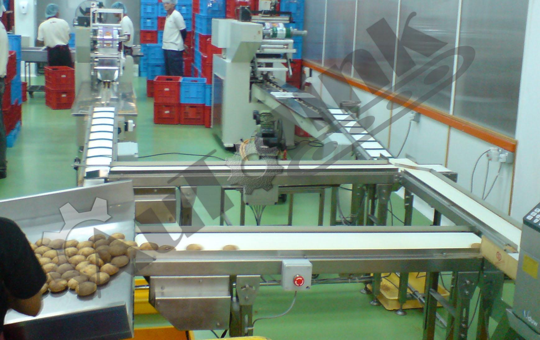 Conveyor System Autolink Solution Engineering Penang